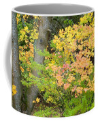 Country Color 23 Coffee Mug