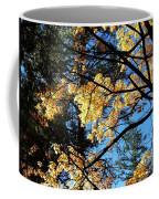 Country Color 25 Coffee Mug