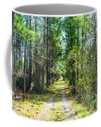 Country Path Coffee Mug