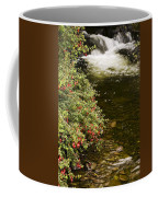 County Kerry, Ireland Fuchsia Bush Coffee Mug