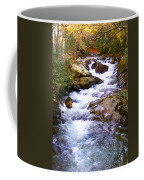 Courthouse River In The Fall Filtered Coffee Mug