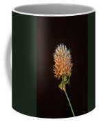 Cover Aglow 1 Coffee Mug