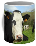 Cow Facing Camera Coffee Mug