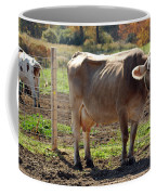 Cow Shadows Coffee Mug