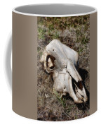 Cow Skull Coffee Mug