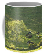 Cows On Hillside Summer In Maine Coffee Mug
