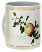 Coxs Apple 1922 Coffee Mug