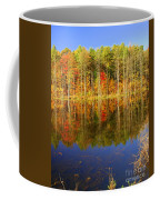 Coxsackie Reflection Coffee Mug