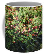 Cranberry Bog Coffee Mug