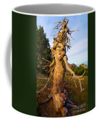 Crater Lake Kachina Coffee Mug