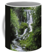 Crawfordsburn Country Park, Co Down Coffee Mug