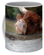 Crazed Look In The Bulls Eye Coffee Mug