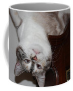 Crazy Cat Coffee Mug