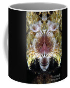 Creation 70 Coffee Mug