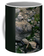 Creek Flow Panel 5 Coffee Mug