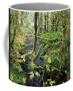 Creek In The Rain Forest Coffee Mug