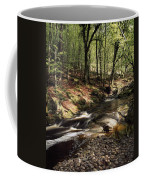 Creek In Woods, Cloughleagh, County Coffee Mug