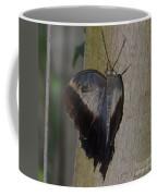 Creeping Tawny Owl Coffee Mug