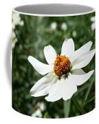 Creeping Zinnia Coffee Mug