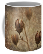 Crepe Myrtle Seed Pods With Grunge And Textures Coffee Mug