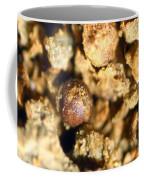 Cretaceous Meteorite Coffee Mug