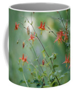 Crimson Columbines Aquilegia Formosa Coffee Mug