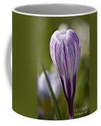 Crocus Blossom Coffee Mug