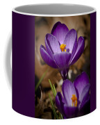 Crocus Royalty Coffee Mug