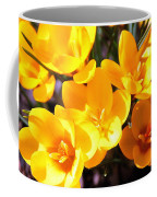 Crocuses In Yellow Coffee Mug