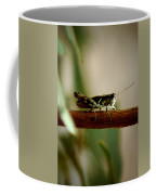 Crossing The Ravine Coffee Mug