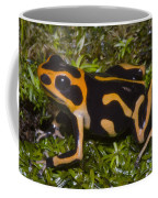 Crowned Poison Frog Coffee Mug