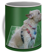 Cruz Enjoying A Warm Gentle Breeze 02 Coffee Mug