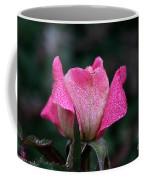 Crystal Encased Coffee Mug
