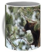 Cub In Tree Coffee Mug
