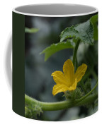 Cucumber Flower Coffee Mug
