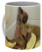 Cuddle Bears Coffee Mug