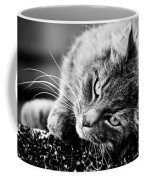 Cuddly Cat Coffee Mug