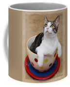 Cup O Tilly 2 Coffee Mug