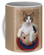 Cup O Tilly 3 Coffee Mug