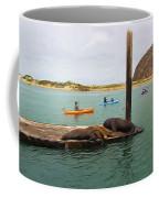 Curious About Sea Lions Coffee Mug