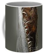 Curly Bark Of A Palm Tree Coffee Mug