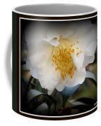 Curtsy Coffee Mug