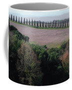 Cypress Allee Coffee Mug