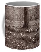 Daffodil Glade Number 2 Bw Coffee Mug