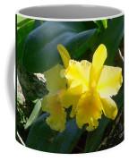 Daffodils In The Wild Coffee Mug