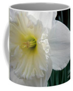 Daffy-down-dilly Coffee Mug