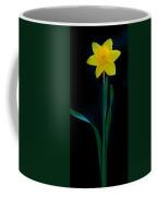 Dafodil Panorama 4432 Coffee Mug