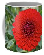 Dahlia 4001 Coffee Mug