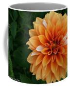 Dahlia 7001 Coffee Mug