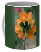 Dahlia 9001 Rearview Coffee Mug